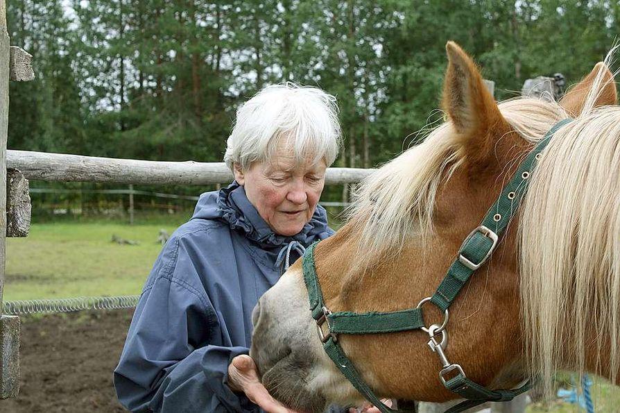 """""""Hienoja hevosia, niitä ykkösiä, on ollut ja on niin monta. Yksi mieleen jääneistä on oma kasvatti, ruuna Junkkari"""", pohtii Saara Moilanen."""