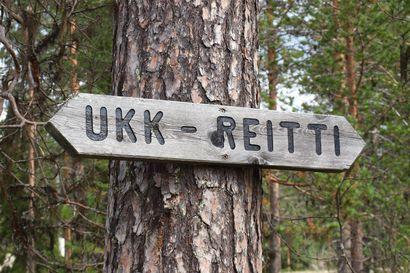Ränsistynyttä, pian 40-vuotiasta UKK-reittiä kunnostetaan Sallassa – Tavoitteena purkaa Oulangan kansallispuiston ruuhkaa pohjoiseen