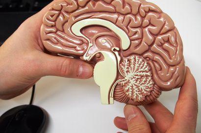 Virukset ovat monien syöpien, MS-taudin ja muiden autoimmuunisairauksien taustalla – entä Alzheimerin?
