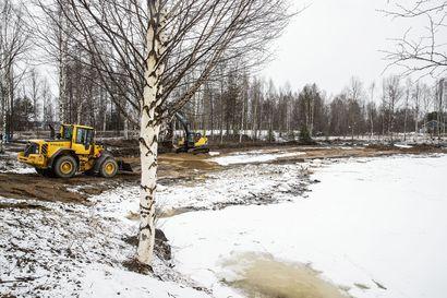 Rovaniemen Alakorkaloon esteetön uimaranta – rantaa kunnostetaan ja laajennetaan myös muuten