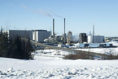 Tehtaiden seisokit laskivat Terrafamen liikevaihtoa viime vuonna – Nikkelin hinta sahasi voimakkaasti