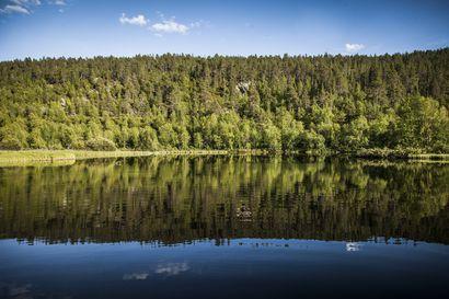 Koneellinen kullanhuuhdonta päättyy Lemmenjoen kansallispuistossa – Heinäkuusta lähtien kultaa kaivetaan lapiolla