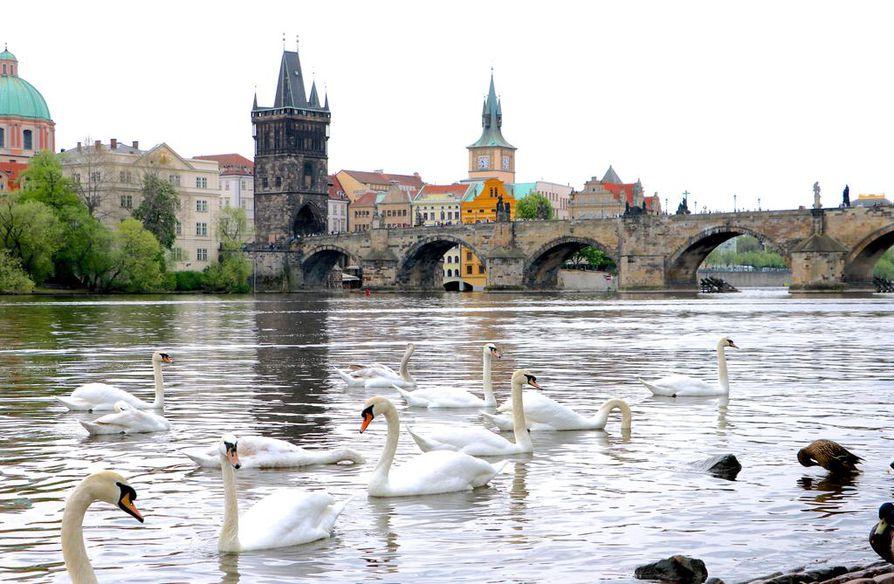 Kevät on hyvää aikaa matkustaa Prahaan.