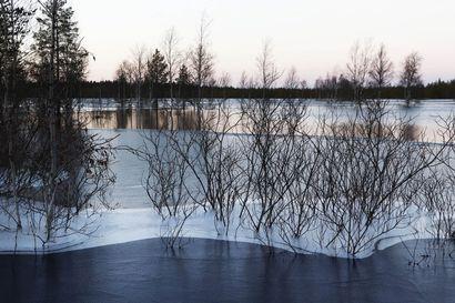 Syystulva laskee Iijoen vesistössä vähitellen – vedenpinnat pysyttelevät korkealla koko marraskuun