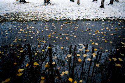 Maanantaina lumisade muuttuu vesisateeksi – Päivystävän meteorologin mukaan Lapin lumikinokset eivät kerkeä sulaa