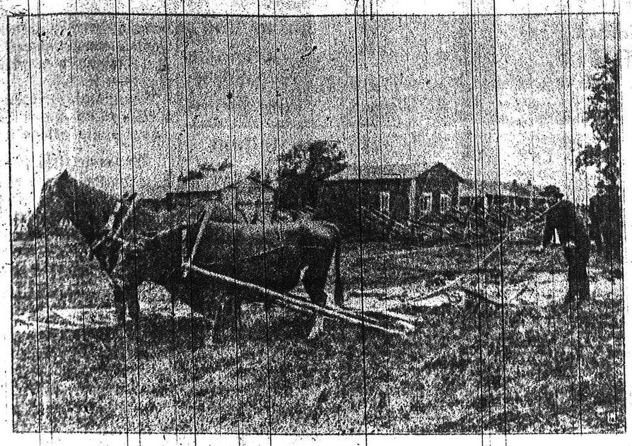 Ensimmäinen uutiskuva julkaistiin Kalevassa 24. tammikuuta 1911. Kuvassa siitossonni on valjastettu kyntötyöhön hevosen rinnalle.