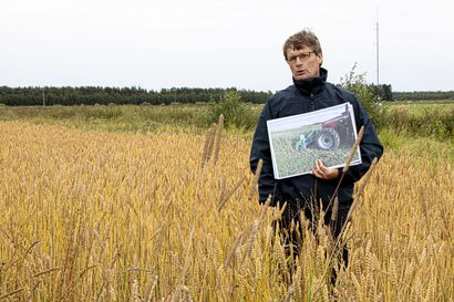 Uudistavan viljelyn menetelmä sitoo hiiltä – Ruukin tutkimusasemalla selvitetään sopivaa viljelykiertoa ja konekantaa