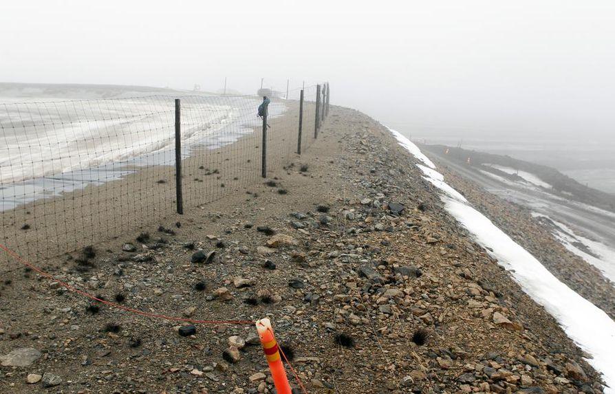 Rikosepäilyt liittyvät Talvivaaran kaivosalueella Sotkamossa viime huhtikuussa havaittuihin lintukuolemiin.