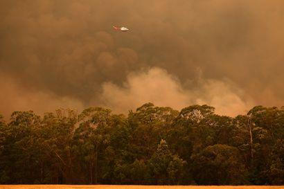 Sääolot kiihdyttivät taas maastopaloja Australiassa – liikkeellä on ennätykselinen määrä pelastushenkilöstöä