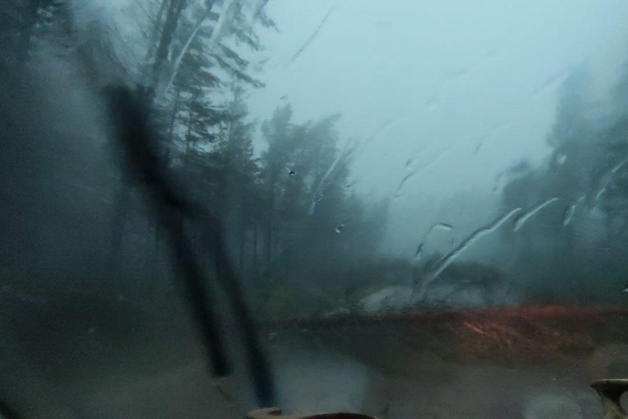 """Katso video: kuusamolaiset Palosaaren sisarukset jäivät myrskyssä vaaralliseen mottiin – """"Sylin paksuiset puut rapsahtelivat keskeltä kahtia ympärillä jatkuvalla syötöllä"""""""
