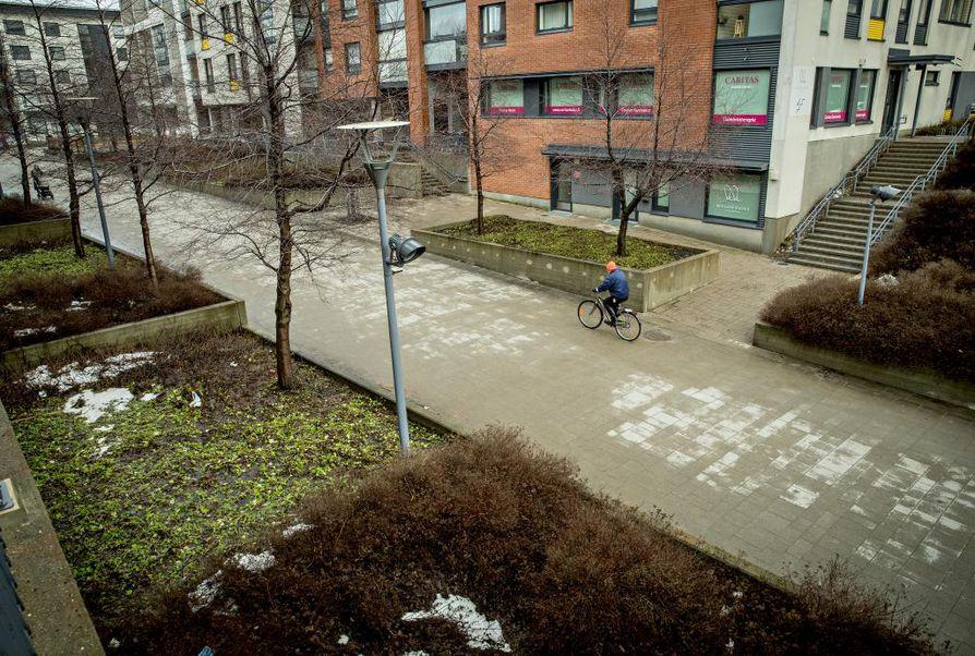 Viikko alkaa Oulun seudulla ajankohtaan nähden poikkeuksellisen lämpimässä säässä, joten vesikelejä on jälleen tiedossa.