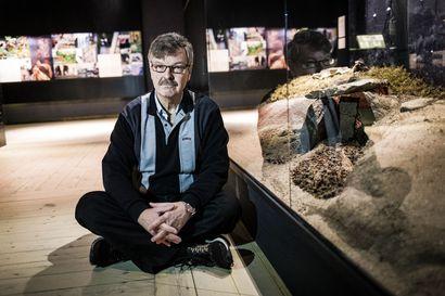 Arkeologiassa tarvitaan salapoliisin mieltä – eläkkeelle jäävän Lapin maakuntamuseon johtaja Hannu Kotivuoren mieleen ovat jääneet Tervolasta löydetyt kivikautiset asumukset