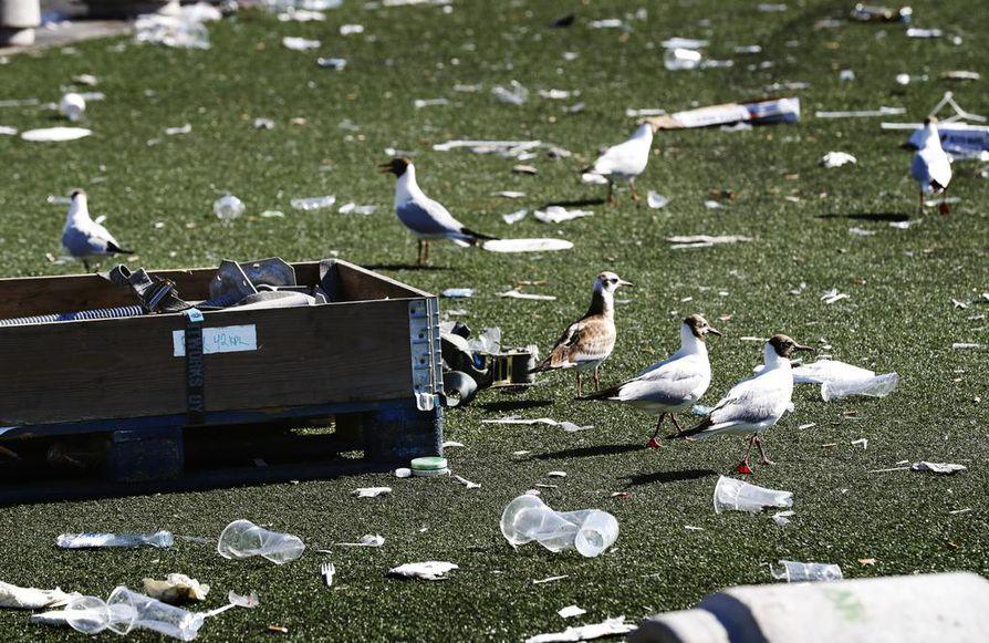 Lokit kiinnostuivat Qstock-alueen roskista sunnuntaina.