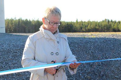 Vartinojan tuulipuisto vihittiin käyttöön
