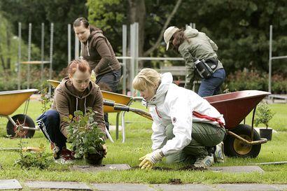 Kempeleessä Kirkonmäen hautausmaalla hautojen hoito on koettu hankalaksi tänä kesänä – Syynä on putkirikko, jonka takia osa linjastosta on suljettu