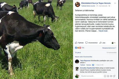 Eläinlääkäri Posiolta kolme kertaa samaan synnytykseen Kuusamossa – 20 vuotta vanhasta tarinasta tykätään