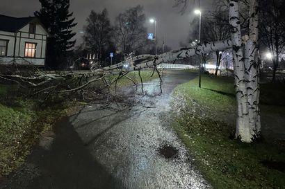 Tuuli puhallellut kattohuopaa ja kaatanut puita Meri-Lapissa, yksi puu pysäytti Lapin junaliikenteen