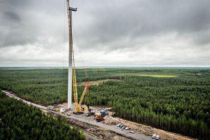 Markkinaehtoisia tuulivoimaloita nousee Pohjois-Pohjanmaalle kuin sieniä sateella – Kunnat ovat itse aktiivisia, koska tuulivoima tuo merkittävät kiinteistötuloverot tyhjiin kassoihin
