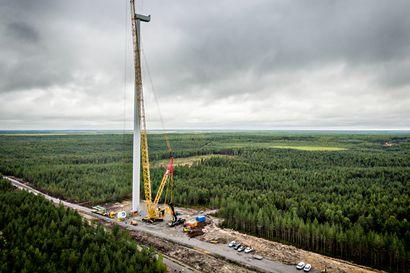 Tuulivoimaloiden lavat vatkaavat maakuntaan verotuloja