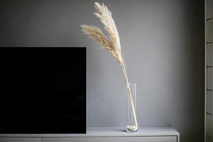 Vaalea kaksikko pampaheinän oksia olivat ensimmäiset heinät, jotka pääsivät Karjulan kotiin.