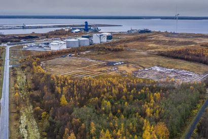 Vihreäsaaren nousee Suomen toiseksi suurin aurinkovoimala – Oulun kaupunki ostaa kaiken sen tuottaman sähkön