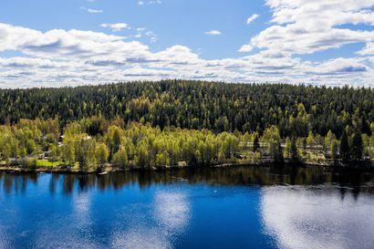 """Rovaniemi ostaa maata Pöyliövaarasta  – """"Ostamme kaiken maan, minkä saamme järkevään hintaan"""""""