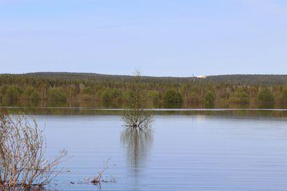Vihreä nurmi tai lainehtiva järvi – Tältä sama paikka näyttää viitenä eri vuonna 