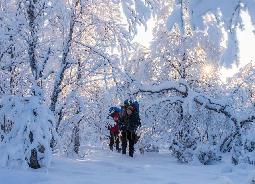 Marraskuuta Pöyrisjärven erämaassa. Olosuhteet ovat jo täysin talviset.