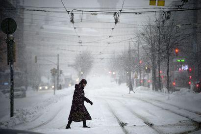Helsinki julisti ilmastohätätilan, mutta kippaa lunta ja sen mukana roskia mereen myös tänä talvena