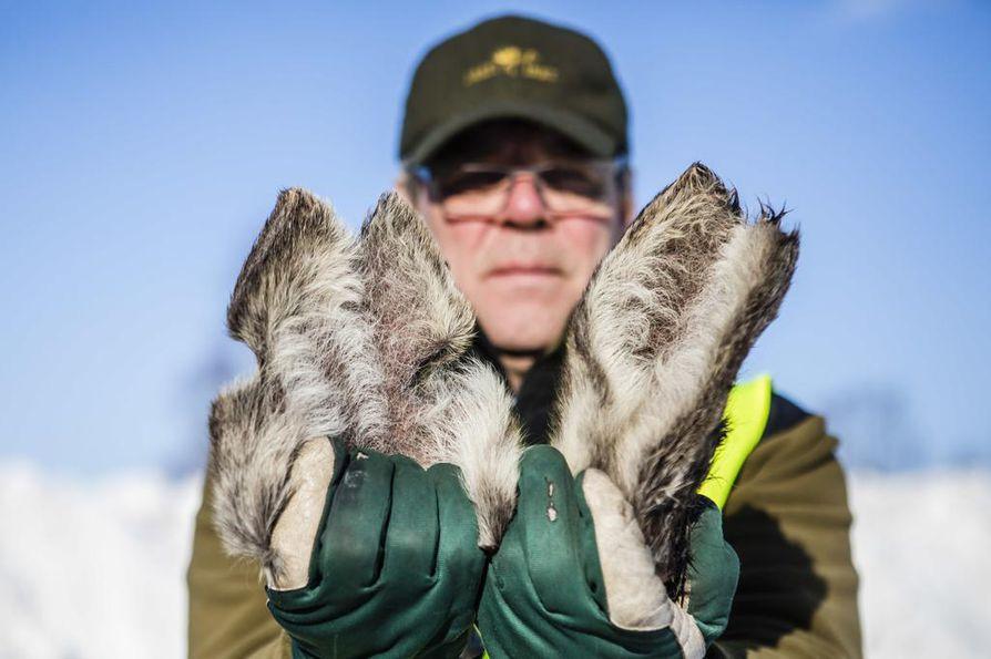 Inarin riistanhoitoyhdistyksen yhdyshenkilönä Jari Kangasniemi törmää lopetettaviin tai itsestään kuolleisiin hirviin, joiden korvia on selvästi leikattu. Nämä ovat talvella löydetyltä 3,5-vuotiaalta naaraalta.