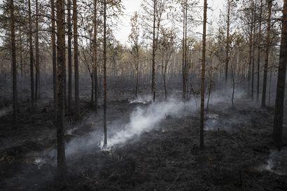 Muhoksen metsäpalon sammutus voi jatkua vielä viikonloppuun saakka