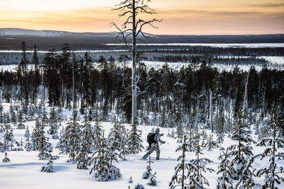 """Erämuseolla on liian iso hintalappu – """"Rovaniemellä ei ole edellytyksiä"""""""
