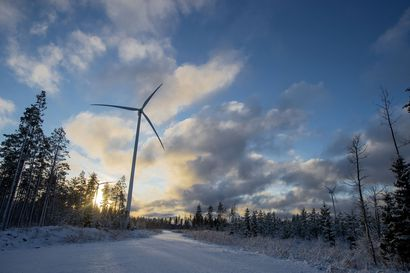 """""""Moni kunta on Pohjois-Pohjanmaalla myötämielinen tuulivoimaa kohtaan"""" – Metsähallitus haluaa ydinvoimalan verran lisää tuulivoimaa valtion metsiin"""