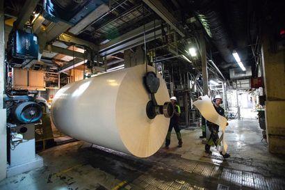 Koronakriisissä on myös voittajia – vessapaperin hamstraamisen lisäksi metsäteollisuutta kannattelee muukin seikka