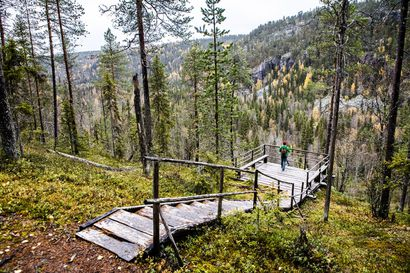 Ympäristöministeri esittää kahta uutta kansallispuistoa – Posion Korouoma kisaa useiden muiden uusien hankkeiden kanssa uudesta puistosta