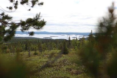 Suosiotaan kasvattaneen Riisitunturin kansallispuiston parkkialueen laajennustyöt alkavat – autopaikkojen määrä kolminkertaistuu