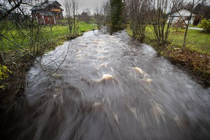 Vedenpinta nousussa uhkaavasti Pattijoella, rakennukset voivat kastua – vettä riittää nyt Pohjois-Pohjanmaan vesistöissä