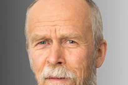 """Pekka Virtasen kolumni: """"Kesäkuussa 1974 Koillis-Lapissa kuoli 70 sääskeä kämmenen kertaläiskäisyllä ja 1990-luvulla Kuusamossakin kolmatta kymmentä"""""""