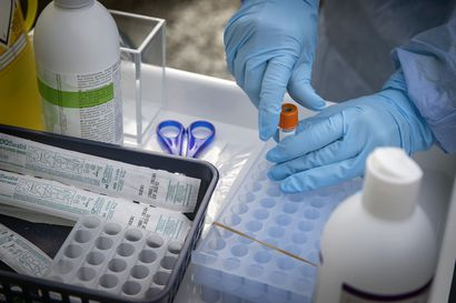 THL: Oulussa kymmenen uutta koronavirustartuntaa, muualla Pohjois-Pohjanmaalla ei tuoreita tautitapauksia