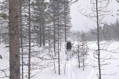 Latvalinnustajat hiihtävät umpihangessa