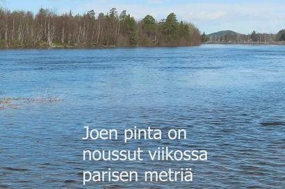 Vesi nousee Ivalojoessa