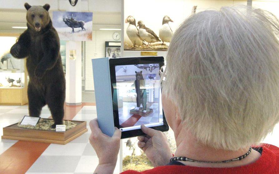 Elsa Apila ottaa kuvaa taulutietokoneella Oulun yliopiston eläinmuseossa.