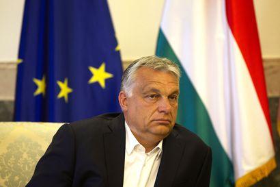 """Suomen Unkarin-suurlähettiläs pitää myllykirjeitä poikkeuksellisina – """"On poikkeuksellista, että jonkun maan hallitus tällä tavalla lähettää kirjeitä"""""""