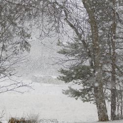 Lappiin kertyy nyt vauhdilla lunta – Kittilän Kenttärovan havaintoasemalla jo 35 senttiä
