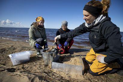Muoviroskat talteen yksi kerrallaan – WWF:n muoviroskakiertue rantautui Nallikariin