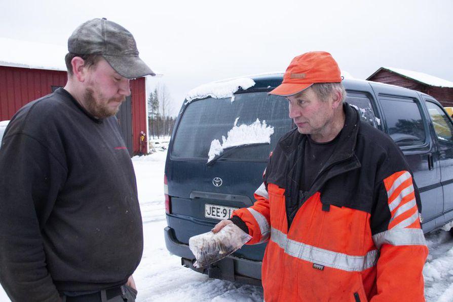 Juuso Mikkola vinkkasi Kyösti Myllykoskelle Mikkolan tilan läheisyyteen suden torstaina tekemästä ulosteesta. Myllykoski nouti näytteen Lukelle toimitettavaksi.