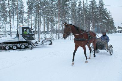 Samalla reitillä hiihtäjät, hevoset ja autot – tätä mieltä käyttäjät ovat Jyrkkäkosken ulkoilualueen kehittämisestä