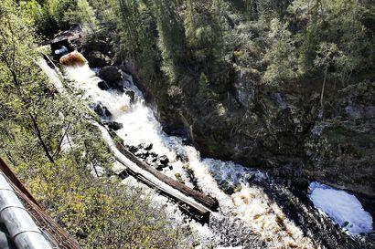 Napapiirin retkeilyalueen ja Auttikönkään kävijämäärät kasvoivat, kansainvälisten matkailijoiden puuttuminen näkyi Inarin retkeilyalueella