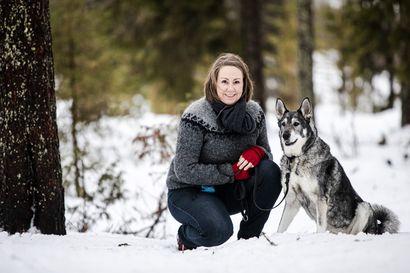 Anne Pahtakari pärjää pystykorvansa kanssa ilman allergialääkettä, mutta siskon vinttikoirat saavat silmät punoittamaan – Mikä koirassa allergisoi?