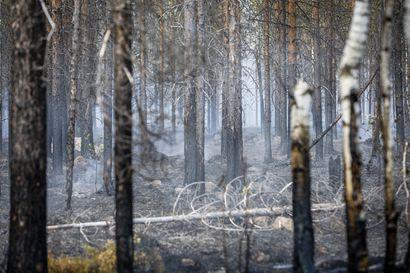 Helteinen heinäkuu piti metsäpalojen tähystyslentokoneet kiireisenä– Tähystyslentojen määrä saattaa nousta historiallisen suureksi